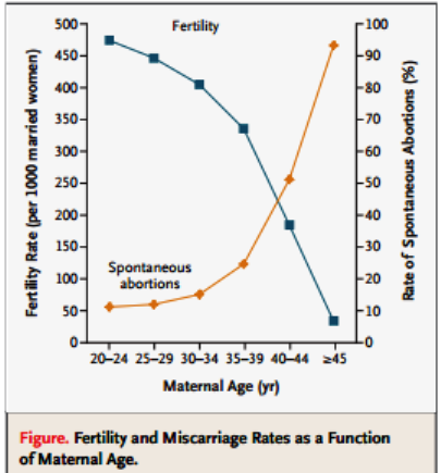 Fertility-Miscarriage